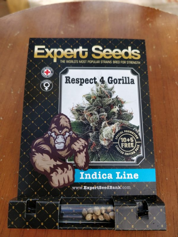 Expert Seeds Respect 4 Gorilla cannabis seeds