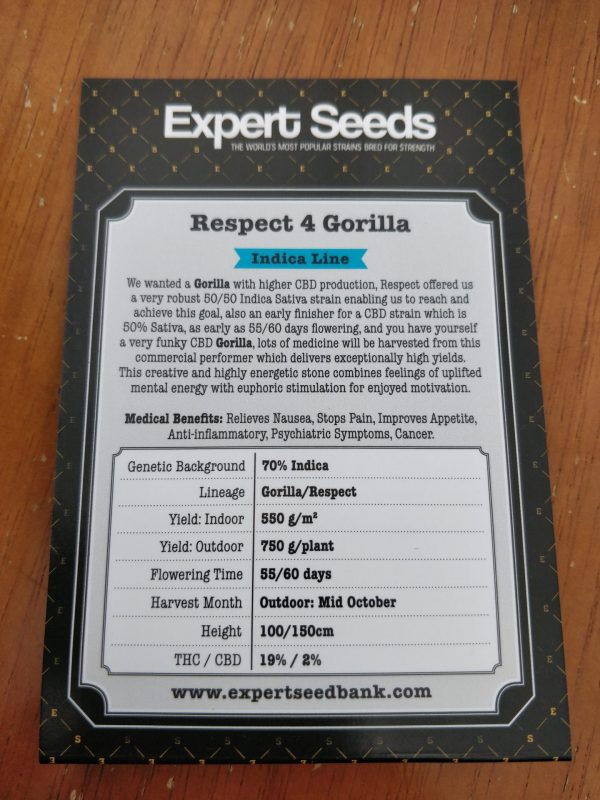 respect 4 Gorilla seeds by expert seeds