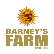 Barneys Farm-Cannabissamen-Züchter