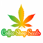 Coffee Shop Seeds cannabis seed bank
