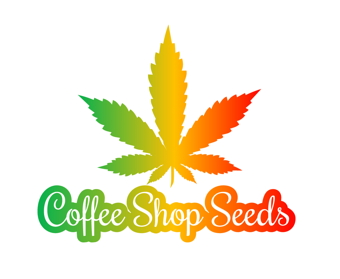 Coffee Shop Seeds Hanfsamenbank