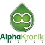 Alphakronik-genen