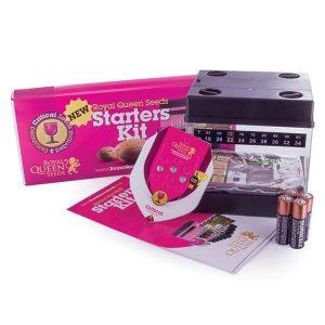 RQS Feminised Starters Kit