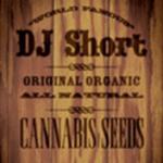 DJ Short cannabis seeds