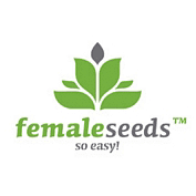 Female Seeds semi di cannabis