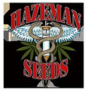 Hazeman frø