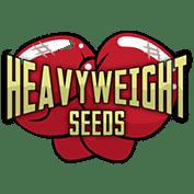 Nasiona ciężkie