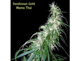 Mama Thai Regular Cannabis Seeds by Seedsman