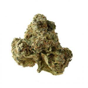 AK OG Kush Feminised Cannabis Seeds by Amsterdam Genetics