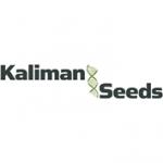Kaliman Seeds cannabis seedbank
