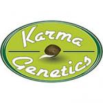 Karma-Genetik