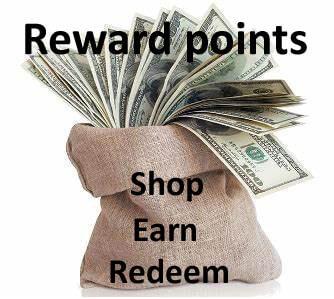 Saco de dinheiro de pontos de recompensa