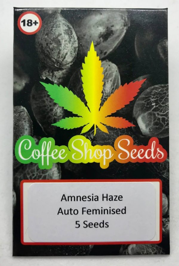 Anmesia Haze Autoflowering cannabis seeds