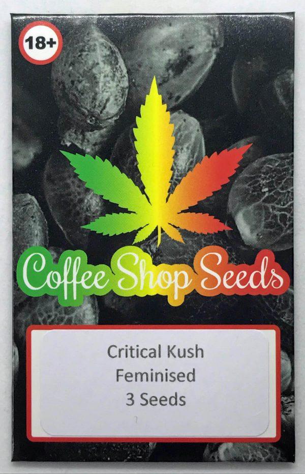 Critical Kush seeds