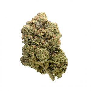 Chunky Cookies Feminised Cannabis Seeds by Amsterdam Genetics
