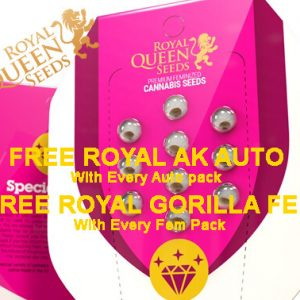 Royal Queen Seeds - Free Seeds