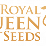 Royal Queen Seeds cannabis seed breeders