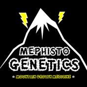Genética Mephisto