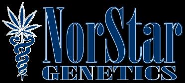 Norstar-Genetik