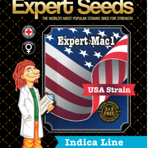 Expert Mac1 Feminised Cannabis Seeds by Expert Seeds