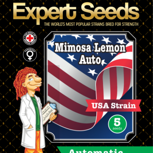Mimosa Lemon Auto Feminised Cannabis Seeds by Expert Seeds
