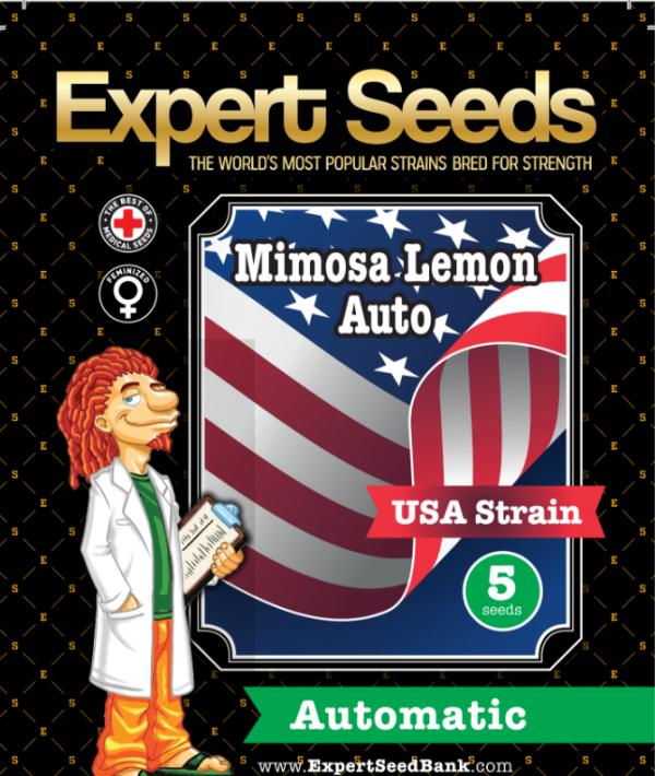Mimosa Lemon Auto Feminised Cannabis Seeds by Expert Seeds