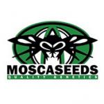 mosca Seeds cannabis seed breeders