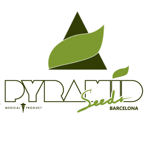 Pyramid Seeds cannabis seed breeders logo