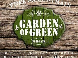 Garden of Green - gratisy tego samego szczepu