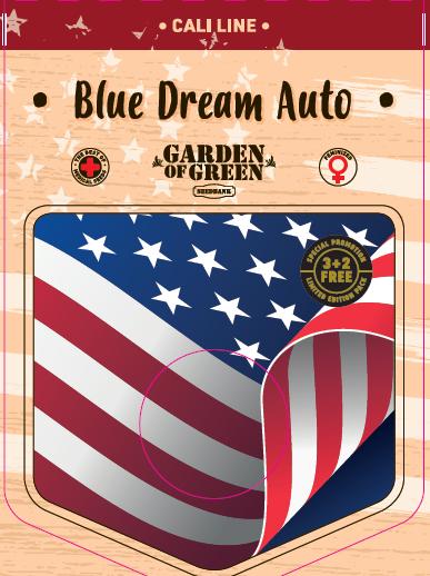 Blue Dream Auto Feminised Cannabis Seeds