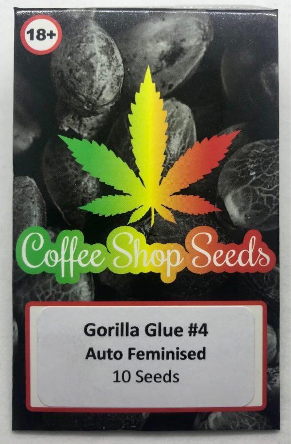 GG4 Autoflowering cannabis seeds