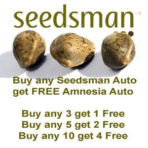 Seedsman - FREE Amnesia Auto